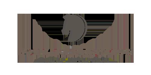 equi-reflection.de Logo